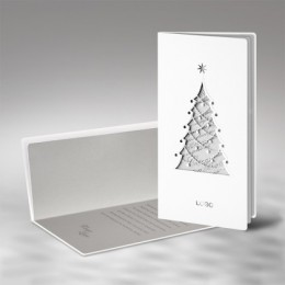 Kalėdinis atvirukas FS480tb
