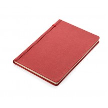 Notebook SPIN red