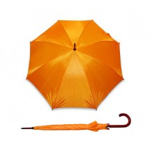 Automatic umbrella STICK